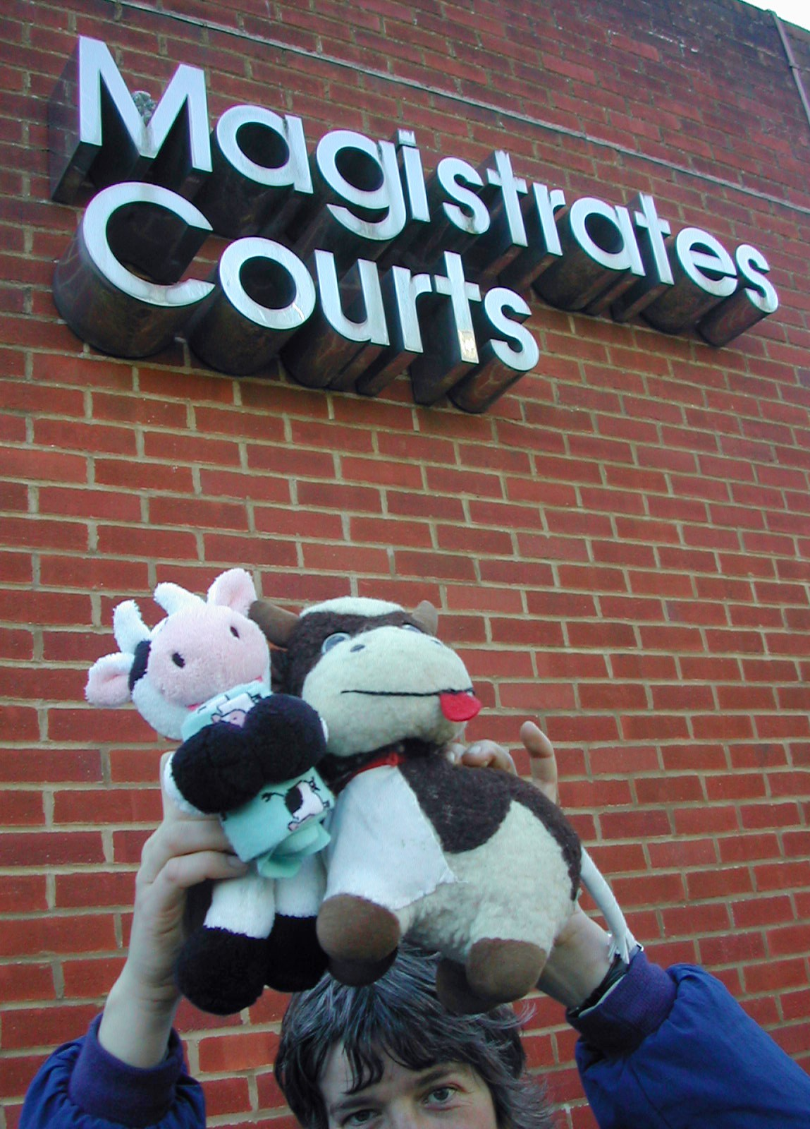 Bonya and Lilith II doing court support at Reading court on 9 March 2009